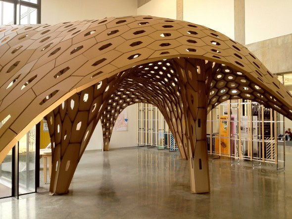 hexshell-carboard-2